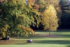 Сцена осени парка Стоковая Фотография
