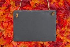 Сцена осени с доской и листьями падения стоковые фотографии rf