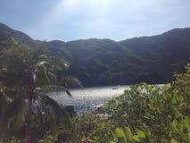Сцена острова Стоковое фото RF