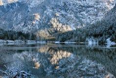 Сцена отражения зимы, Австрия Стоковое Изображение RF