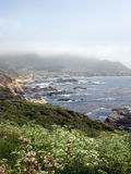 Сцена от побережья Калифорнии с Wildflowers Стоковые Фотографии RF