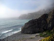 Сцена от побережья Калифорнии с Wildflowers Стоковое Изображение