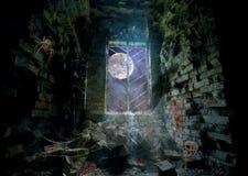 Сцена паука хеллоуина кровопролитная Стоковые Изображения RF