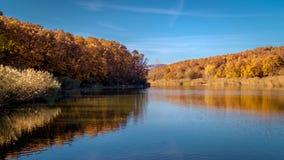 Сцена падения с отражением деревьев осени в озере Стоковые Изображения