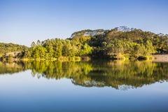 Сцена падения с отражением деревьев осени в озере Стоковое фото RF