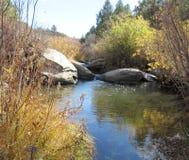 Сцена потока Стоковая Фотография