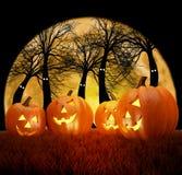 Сцена предпосылки хеллоуина с полнолунием, тыквами и темным лесом Стоковое Изображение RF