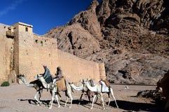 Сцена пустыни людей водя верблюдов приближает к монастырю четвертого века ` s St Катрина, основанию Mt Синай, Египет Стоковое Изображение