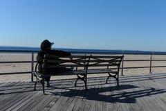 Сцена пляжа океаном на острове кролика, Стоковое фото RF