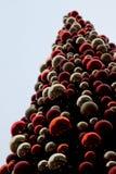 Сцена рождественской елки Стоковое фото RF