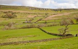 Сцена сельской местности в участках земли Йоркшира Стоковые Изображения RF