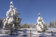 Сцена скотного двора зимы в Айдахо Стоковое Изображение RF