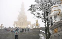 Сцена снега в goldentop, Mount Emei, фарфоре Стоковые Фотографии RF