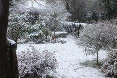 Сцена снега суффолька стоковые фотографии rf
