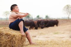 Сцена Таиланда сельская традиционная, тайское усаживание мальчика чабана фермера, клоня буйволы табунит в ферме Тайская расположе Стоковое Изображение RF