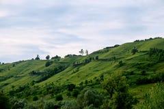 Сцена Трансильвании в лете стоковые фото