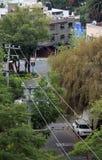 Сцена улицы поляков & деревьев телеграфа Стоковое фото RF