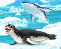 Сцена шаржа - ледовитые животные - леопард и кит моря иллюстрация штока