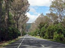 Сцена шоссе Новой Зеландии Стоковые Фото