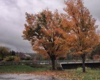 Сцена Adirondack мостом стоковые изображения