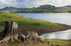 Сцена Baroon озера с пнем дерева Стоковые Изображения