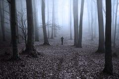 Сцена Grunge в лесе с силуэтом человека Стоковые Фотографии RF
