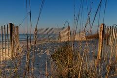 Сцена Myrtle Beach Стоковая Фотография RF