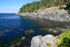 Сцена Seashore в восточном Sooke Стоковые Изображения RF