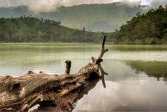 Сцена Telaga Warna, плато Dieng, Ява Индонезия Стоковое Фото