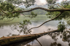 Сцена Telaga Warna, плато Dieng, Ява Индонезия Стоковое Изображение RF