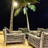 Сцены ночи стороны моря с пальмой Стоковое Изображение RF