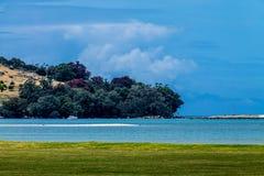 Сцены от запаса острова козы морского, северного острова, Окленд, Стоковая Фотография