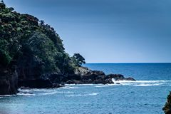 Сцены от запаса острова козы морского, северного острова, Окленд, Стоковое Фото