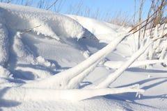 Сцены снега Стоковое Изображение