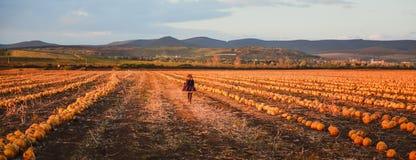 Счастливая девушка в темно-синем пальто бежать на поле тыквы стоковое фото rf