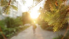 Счастливая девушка города в вскользь платье идя к заходу солнца от камеры движение медленное видеоматериал
