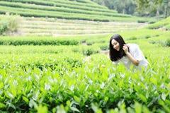 Счастливая девушка красоты в поле чая колодца дракона Longjing в Ханчжоу Стоковая Фотография RF