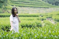 Счастливая девушка красоты в поле чая колодца дракона Longjing в Ханчжоу Стоковое Фото