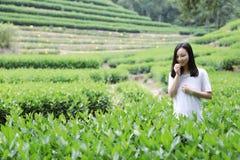 Счастливая девушка красоты в поле чая колодца дракона Longjing в Ханчжоу Стоковые Изображения RF
