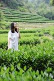 Счастливая девушка красоты в поле чая колодца дракона Longjing в Ханчжоу Стоковое Изображение RF