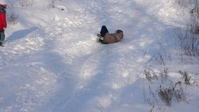 Счастливая девушка свертывает вниз холм в санях в снеге девушка играя в зиме в парке рождества движение медленное сток-видео
