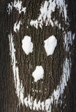 счастливая древесина Стоковое Изображение