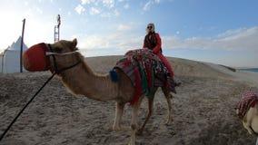 Езда верблюда с женщиной видеоматериал