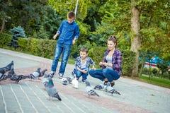Счастливая красивая мать и 2 сыновь подали голуби стоковое фото