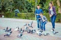 Счастливая красивая мать и 2 сыновь подали голуби стоковые изображения rf