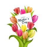 Счастливая литерность дня матерей Поздравительная открытка дня матерей с зацветая тюльпаном цветет Иллюстрация EPS10 вектора Стоковое Изображение RF
