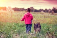 Счастливая маленькая девочка идя с собакой в поле стоковое изображение rf