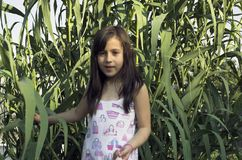 Счастливая маленькая девочка outdoors Стоковая Фотография RF