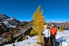 Счастливая молодая семья на каникулах путешествуя в национальном парке Mount Rainier стоковые изображения rf