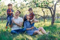 Счастливая молодая семья тратя время совместно снаружи в зеленой природе Родители играя с близнецами снаружи стоковые изображения
